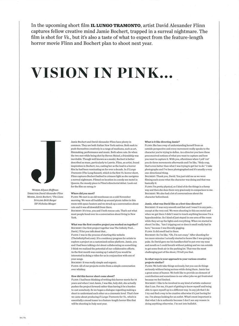 Vision in Pink    (Vs  Magazine)