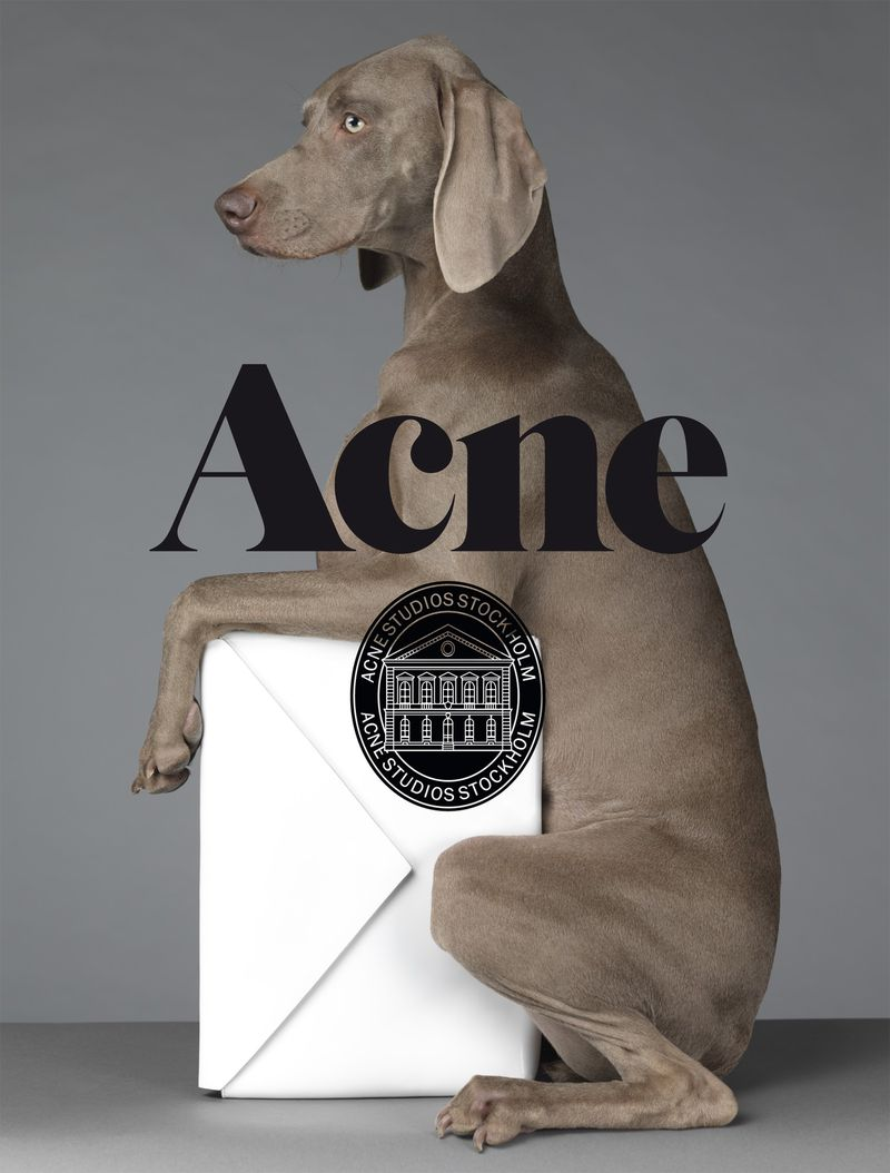 acne paper s s 13 covers acne paper