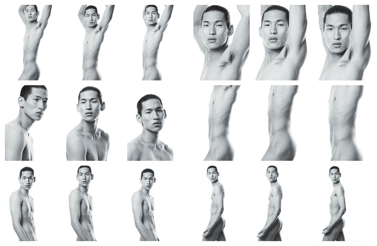 Ausgezeichnet Male Anatomy For Artists Photos Fotos - Menschliche ...