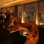 Overlooking the city, the Hotel on Rivington's penthouse is spectacular