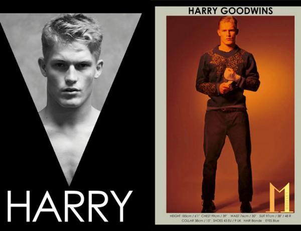 Harry_Goodwins