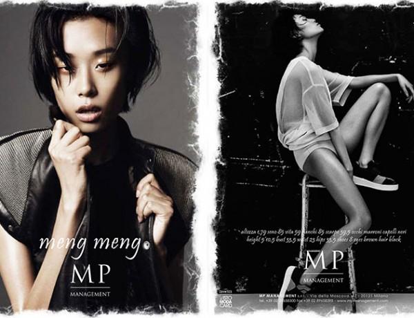 17_Meng_Meng