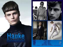 Hauke-Odendahl