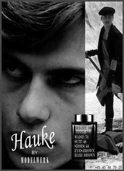 Hauke Odendahl