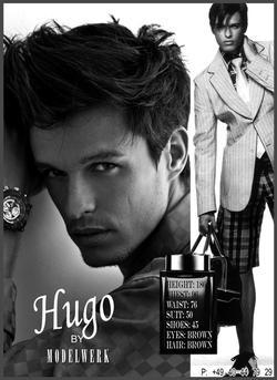 Hugo V