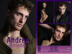Andrea Amadei