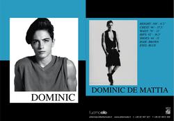 Dominic DeMattia