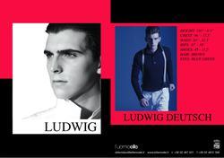 Ludwig D