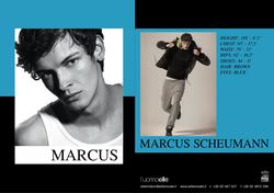 Marcus Scheumann