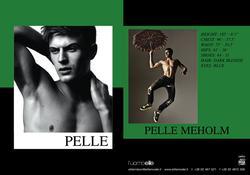 Pelle Meholm
