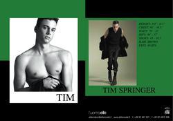 Tim Springer
