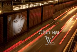 Chin H