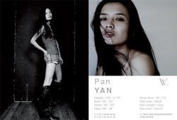 Pan Y