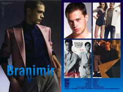 BRANIMIR V