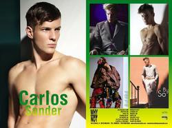 CARLOS SANDER