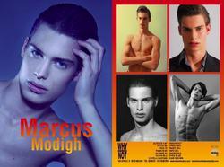 MARCUS MODIGH