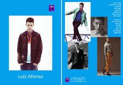 Luiz Afonso