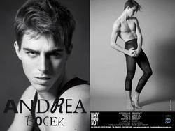 Andrea Bocek