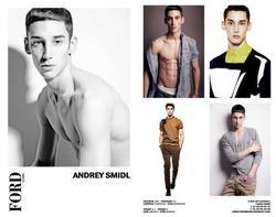 Andrey Smidl