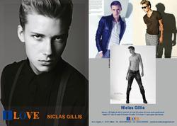 Niclas Gillis