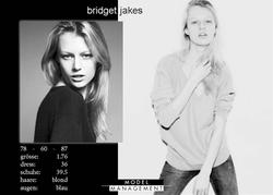 bridges jakes