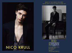 Nico Krull