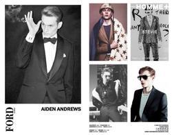 Aiden Andrews
