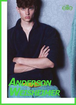 Anderson Weisheimer