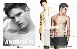 Andrew H