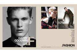 Harry Goodwin