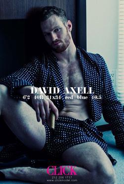 David Axell