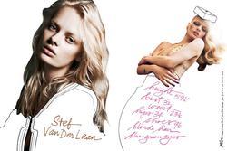 Stef Van Der Laan