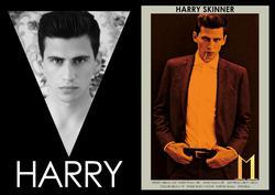 Harry Skinner