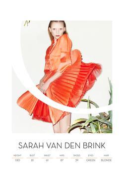 SARAH VAN DEN BRINK