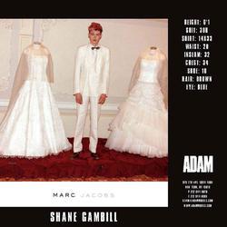 Shane Gambill