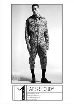 Haris Seoudy