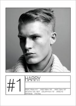 Harry Goodwins