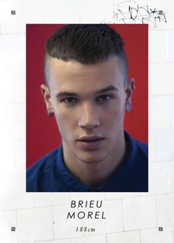 Brieu Morel
