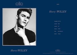 Harry Pulley