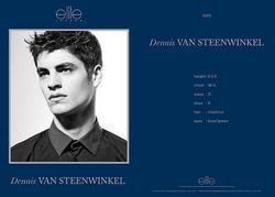 Dennis Van Steenwinkel