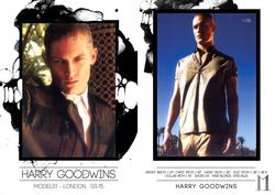 Harry Goodwins