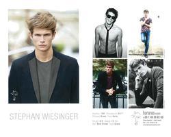 Stephan Wiesinger