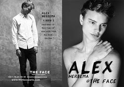 Alex Hereema