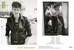 Felix Gesnouin