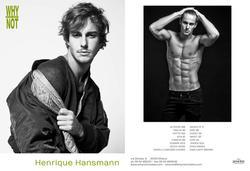 Henrique Hansmann