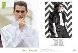 Marc Faiella