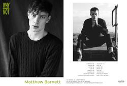 Matthew Barnett