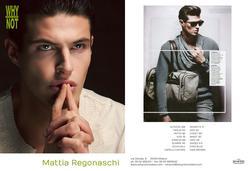 Mattia Regonaschi