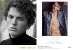 Merlin Watts
