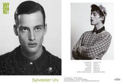 Sylvester Ulv